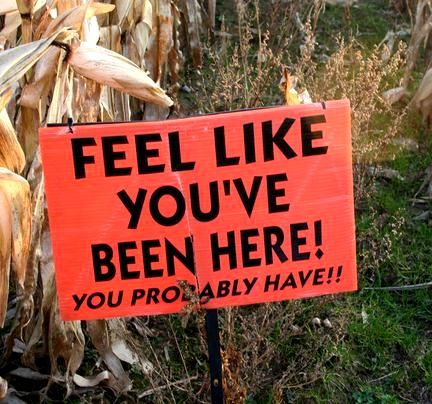 I love a good condescending corn maze sign. Corn mazes can be spooky even in the…