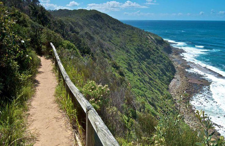 The Coastal Walking Track, Wyrrabalong National Park. Photo: John Spencer