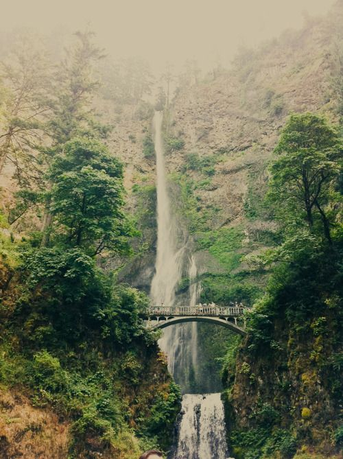 Multnomah Falls <3