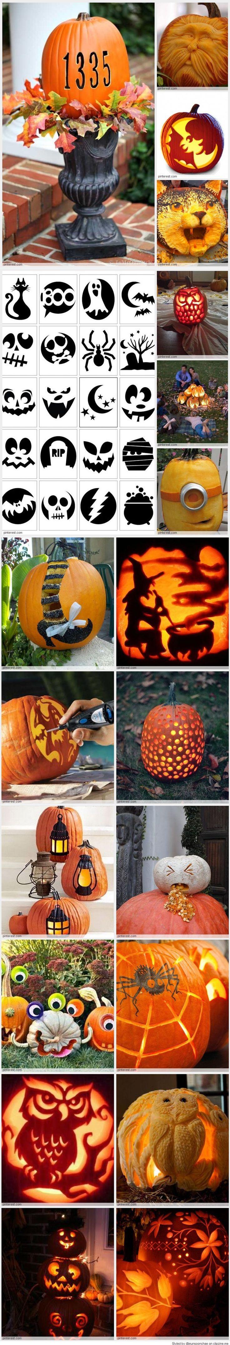 57 best pumpkin patterns images on pinterest pumpkin carvings
