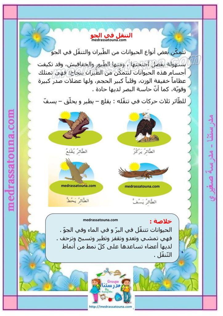 بحث حول التنقل عند الحيوان مدرستنا Frame Decor Lola