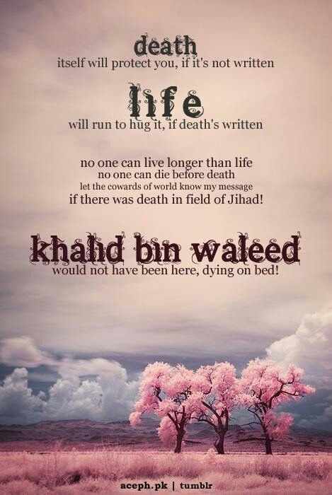 50 Inspirational Islamic Quotes About Death With Images Quotes