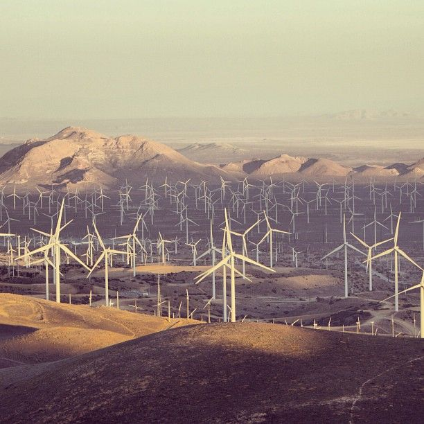 Another shot of the #wind farm in #Tehachapi, #California, home to #GE Power  Water's brilliant wind #turbine. Photo by @sessenyc. #windturbine #technology