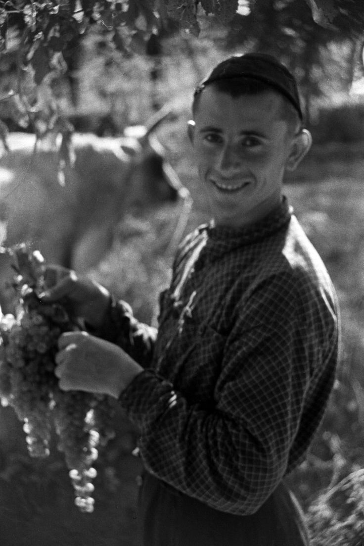 "Youth with grapes, 1938. Kardanakhi village. In 2013 UNESCO designated the Kakhetian ""qvevri"" method of making wine an Intangible Cultural Heritage of Humanity. Kakhetia, Georgia"