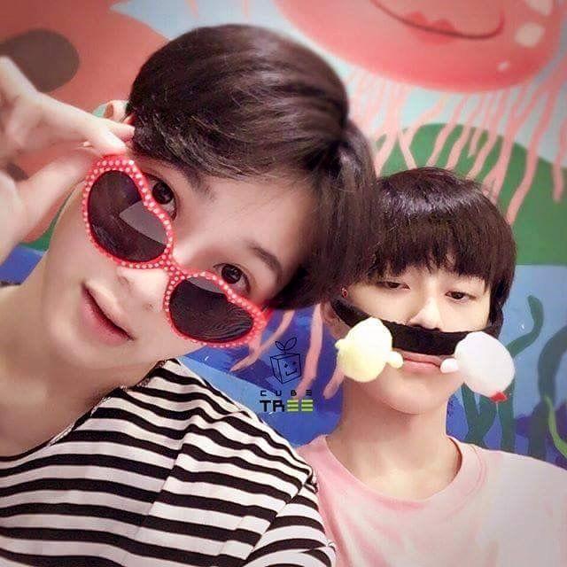 Kuanlin × Seonho Uri 병아리