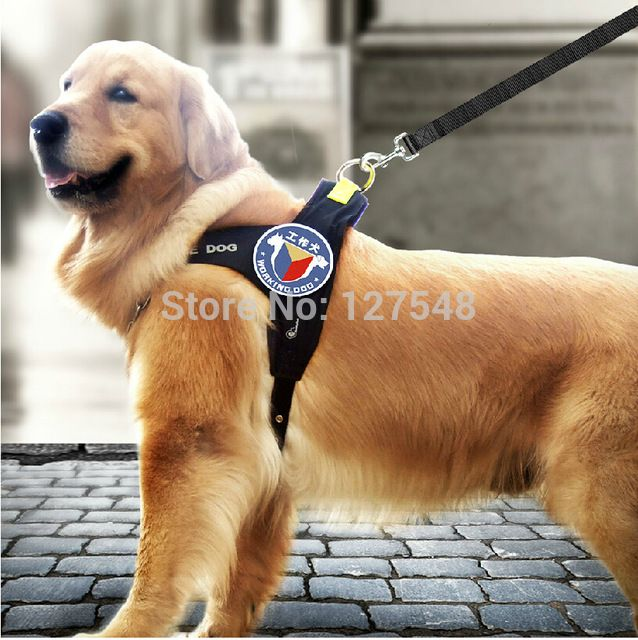 New Design Working Dog Collar Pet Products Exclusive Large Dog harness  Golden Dog Harness Large Collar