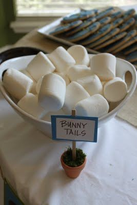 bunny tails - maybe drizzle in white chocolate and sprinkle with coconut