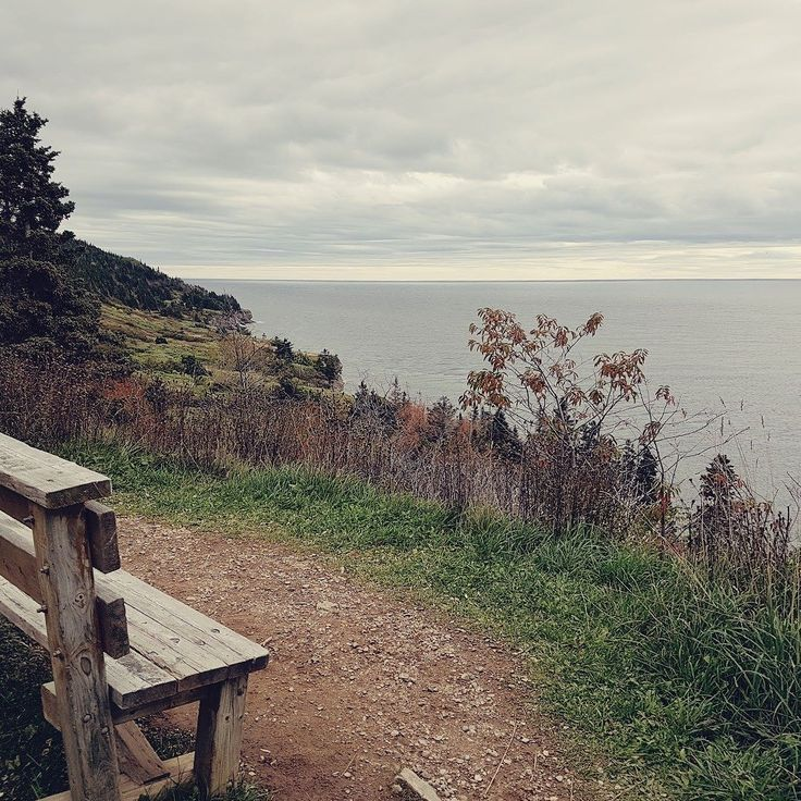 O Parc national Forillon fica na região de Gaspesie (Québec) perto da cidade de Gaspé. Ele tem várias trilhas com vistas lindas (os penhascos na beira do mar são incríveis) e um farolde onde você consegue ver baleias pulando focas e um monte de pássaros. Às vezes dá pra ver linces porcos-espinhos e ursos pretos também.  . . . #quebecoriginal #exploreocanada #canada #extraordinariocanada #quebec #quebecmaritime #quebecbythesea #gaspesie #nature #wilderness #travel #travelblogger #travelgram…