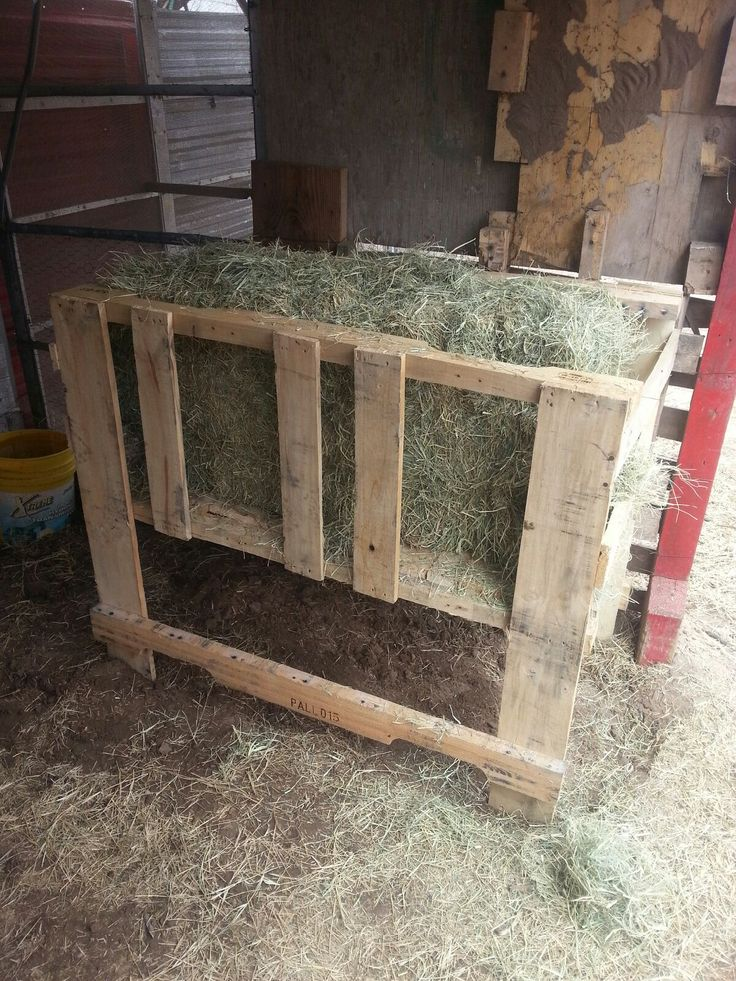 Pallet goat feeder | Projects to Try | Pinterest | Pallets ...