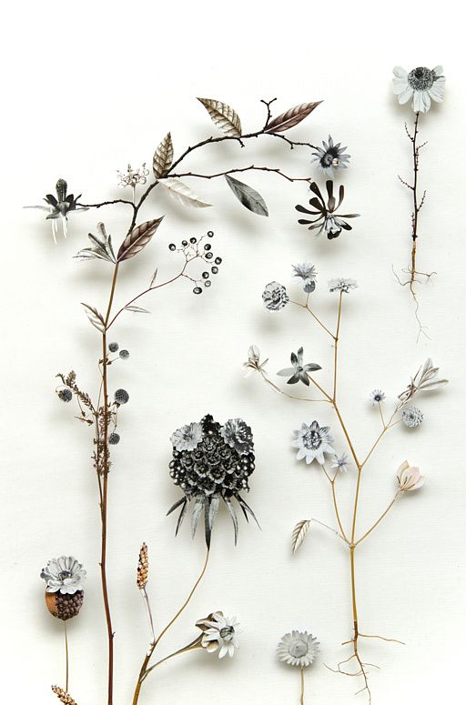 Flower construction #42 Anne Ten Donkelaar//