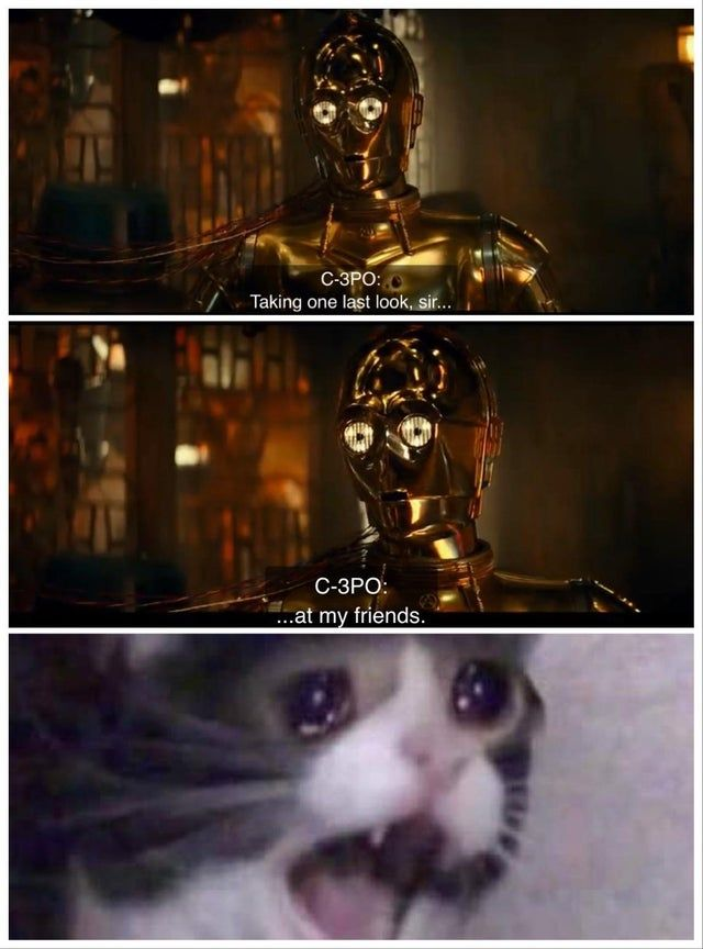 Star Wars The Rise Of Skywalker Memes That Are Making Us Cry 28 Memes Star Wars Memes Star Wars Humor Funny Star Wars Memes