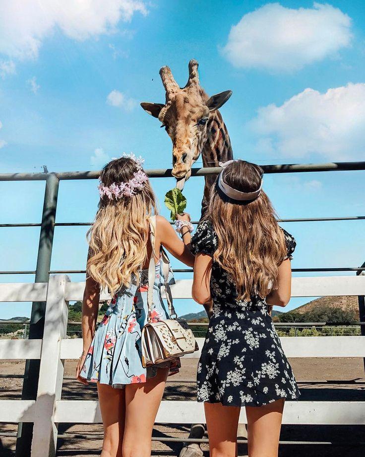 Amo girafas Eu:@catiagranja @rafaelagb
