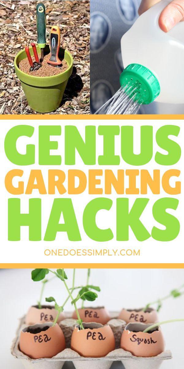 Gartenarbeit für Anfänger SUPER CLEVER HACKS, UM DEN GARTEN SO EINFACH ZU MACHEN …   – Spring – Gardening
