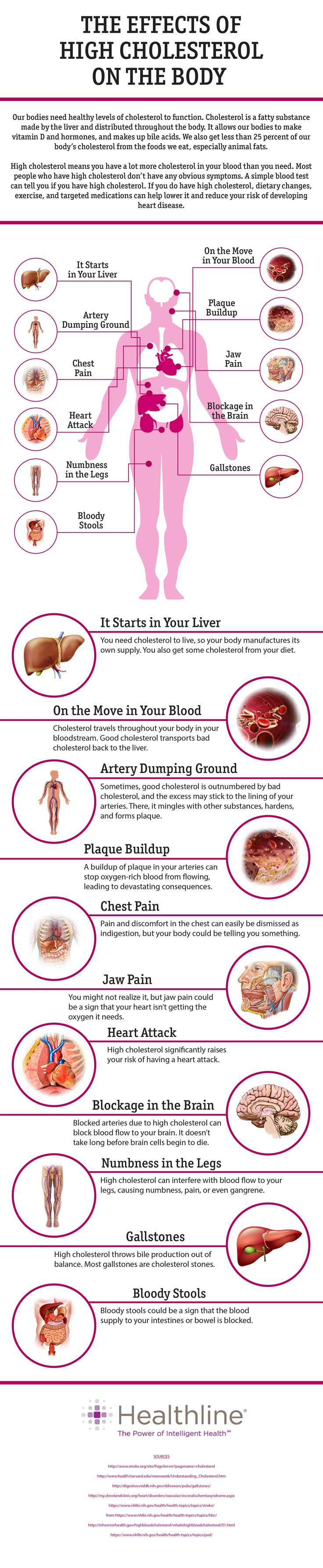 The Effects of High Cholesterol on the Body