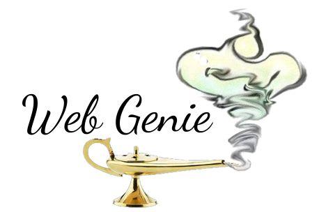Professional Web Design Company http://webgenie.co.za