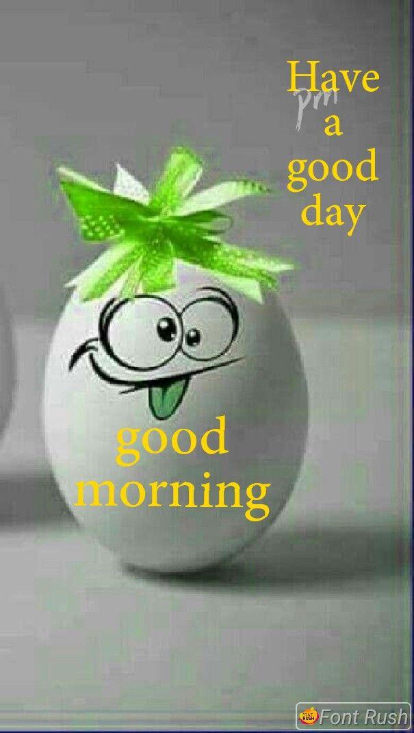 Funny Good Morning Photos : funny, morning, photos, Rachana, Morning, Funny, Greetings,, Greetings, Quotes