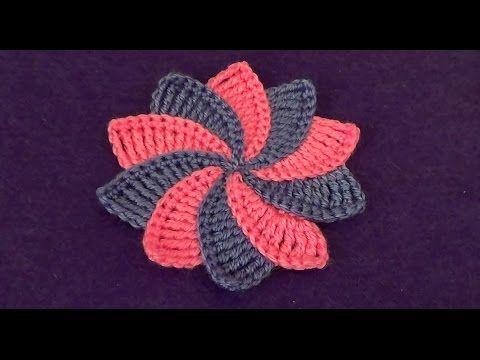 Цветок с разноцветными лепестками - Flower with multicolored petals - YouTube