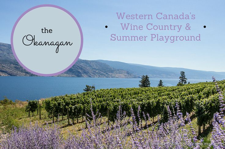 travelyesplease.com | The Okanagan- Western Canada's Wine Country & Summer Playground (Blog Post)