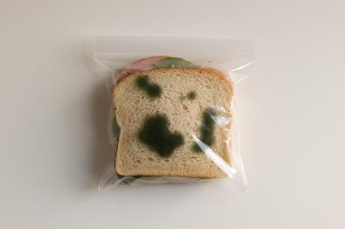 "Ziplock bags with printed ""mold stains."" Never have to deal with co-workers stealing your lunch!"