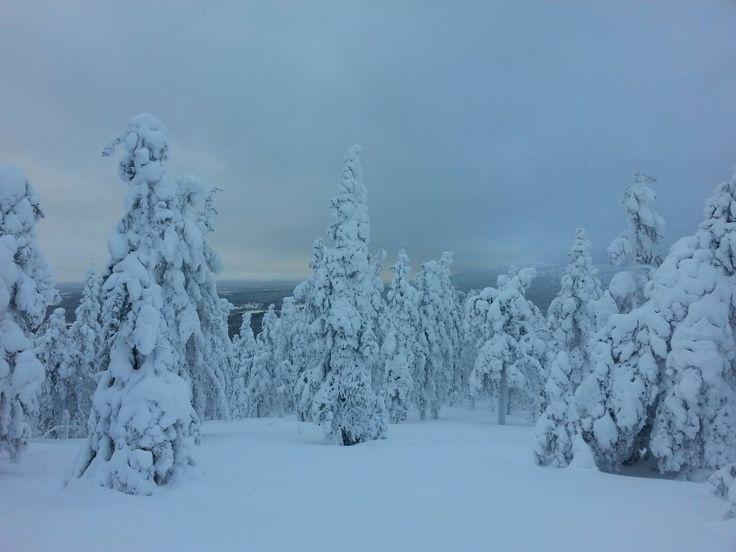 Valo vaihtaa lumen väriä