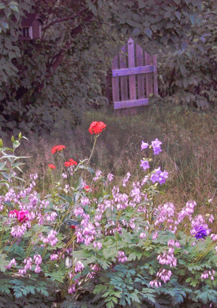 Herkkupurkki: valokuva inspiration, garden, Eglish garden, gate,