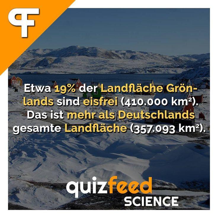 Etwa 19% der Landfläche Grönlands sind eisfrei. Das ist mehr als Deutschlands gesamte Landfläche. Wissen clever verpackt!  #grönland #deutschland #eis #eisfrei #fläche #europa #vergleich #fakt #wissen #urlaub #winter #schnee