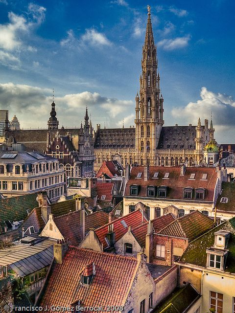Brussels, Belgium.  A view of the rooftops of Brussels in the direction of the Grand Place, which distinguishes the façade and the tower of City Hall.
