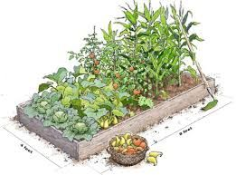 raised bed - Cerca con Google