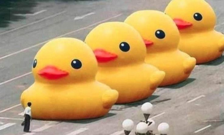 China bans all internet searches for 'big yellow duck' as part of Tiananmen Square anniversary clampdown after prankster substitutes ducks for tanks in viral image #DailyMail