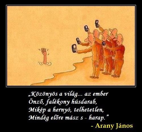 Részlet Arany János Kertben c. verséből. A kép forrása: Zeitgest Hungary # Facebook