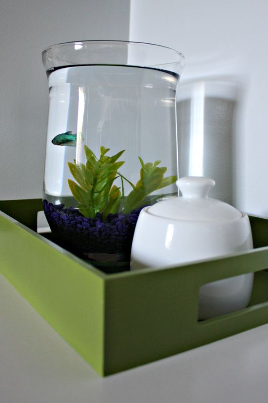 IHeart Organizing: Sugar Jar for the fish food. Totally stole this idea from her! Love it!