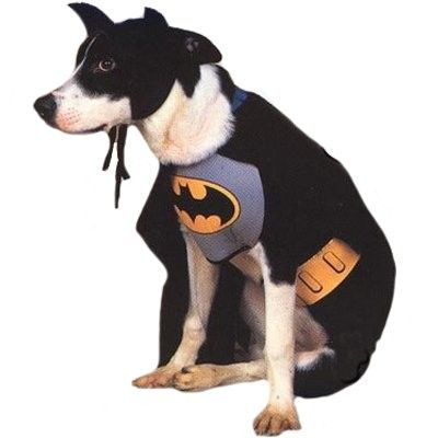 Batman Dog Costume - Contains: Chest Piece, Cape, Head Piece and Belt.  This is an officially licensed product from The Adventures of BATMAN & ROBIN. Medium.
