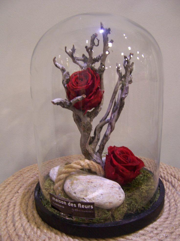 Τριαντάφυλλα σε γυάλινη καμπανα που διαρκούν 3-5 χρόνια