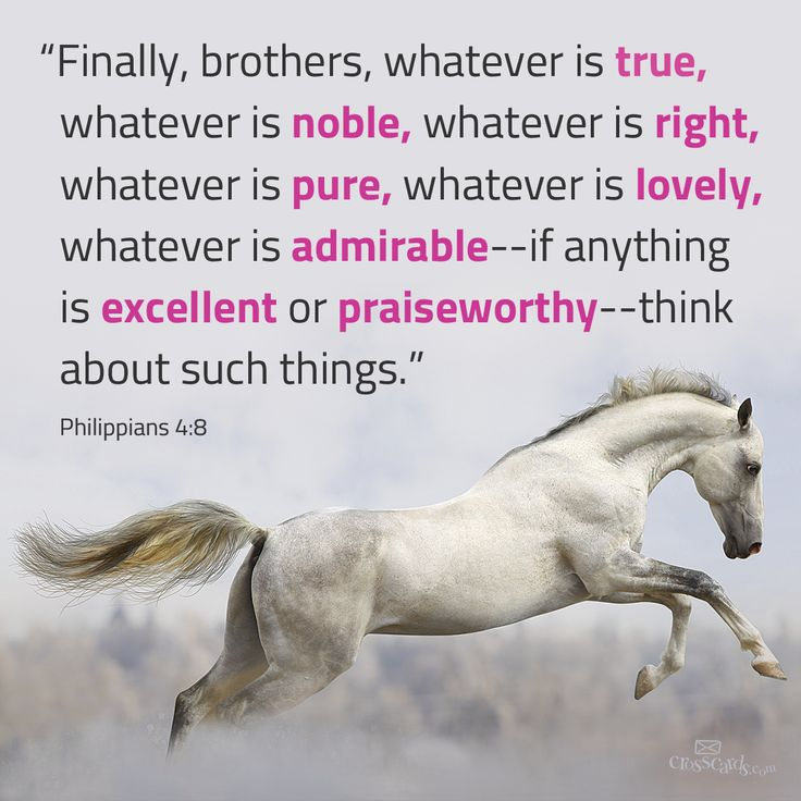 Whatever is true, whatever is noble... Philippians 4:8