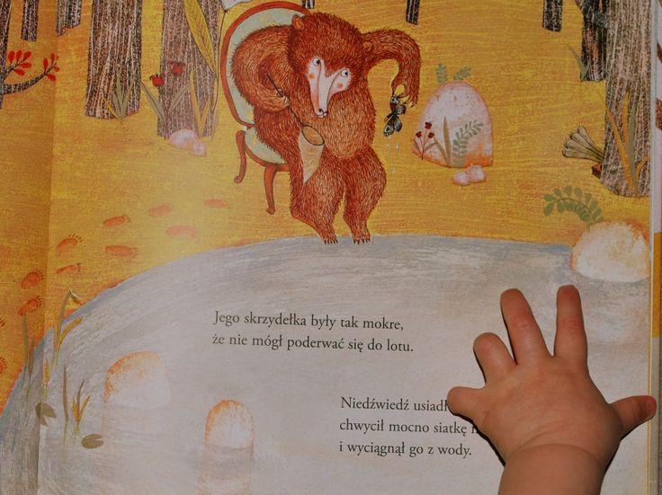 Wyjątkowe książki dla dzieci w jednym miejscu: Niedźwiedź łowca motyli