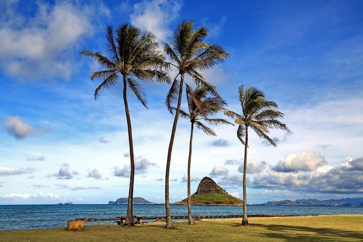 Фото - путешествия по миру: Гавайи, Оаху:Kualoa Beach Park и панорама восточно...