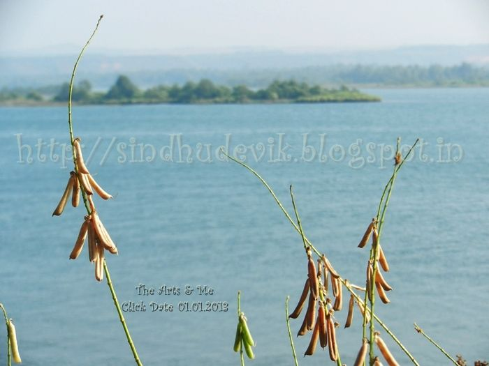 An #island near #kumta  More #photographs @ http//:sindhudevik.blogspot.in