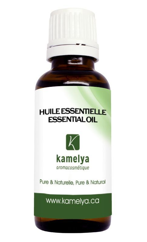 L'huile essentielle de thym thymol est l'une des huiles les plus puissantes qui possèdent le plus de propriétés thérapeutiques. L'huile essentielle de thym thymol est anti-infectieuse à large spectre, antibactérienne, antifongique, antivirale, antiparasitaire, antiseptique et fongicide.  #santé #aromathérapie #huilesessentielles