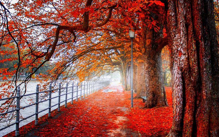 Landscape 4K Ultra HD Wallpaper | Autmn landscape 4K Ultra HD wallpaper | 4k-Wallpaper.Net