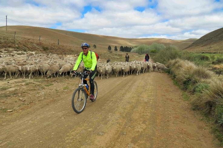 A ride through time - a cycle safari around Bedford.