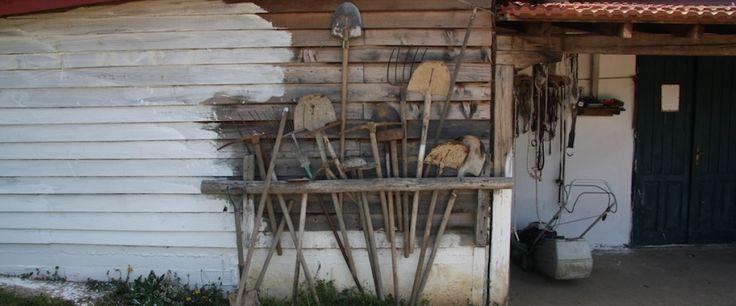 Η Κιβωτός του Νώε βρέθηκε στο Αγρόκτημα Πλατανόρεμα, στη Χαλκιδική. image 14