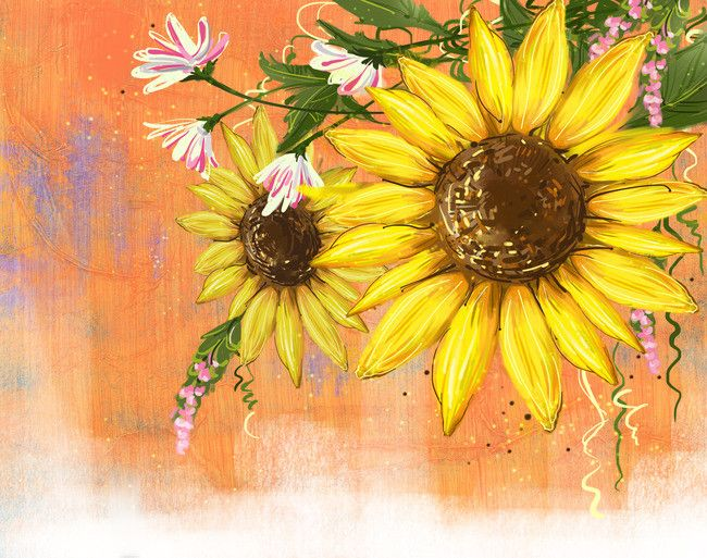 Fresh Sunflower Watercolor Background In 2020 Sunflower Canvas