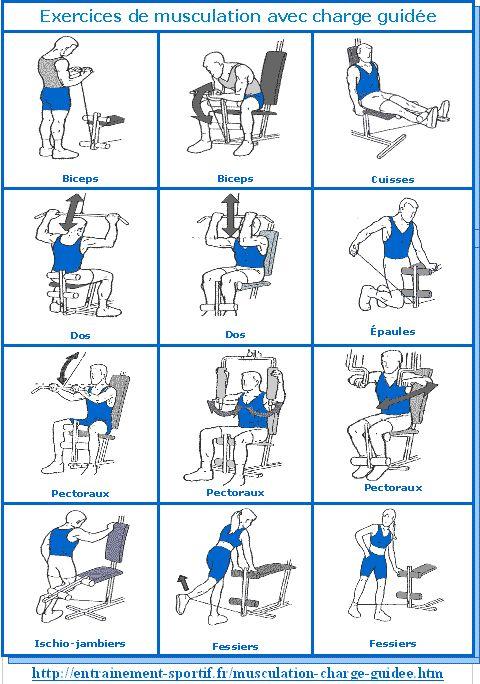 exercices de musculation avec appareil à charge guidée