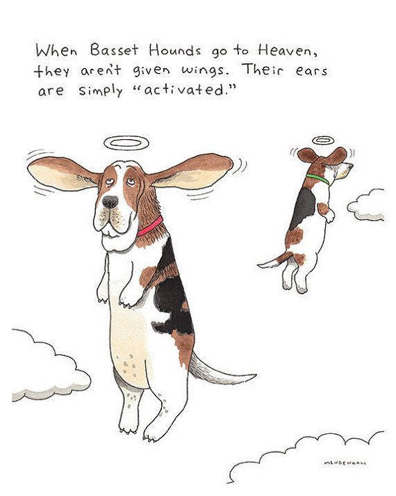Basset Hound Artwork, Dog Owner Gift, Pet Memorial Print, Funny Angels, Floppy Ears, Dog Heaven, Dog Lover Present, Funny Office Decor Art
