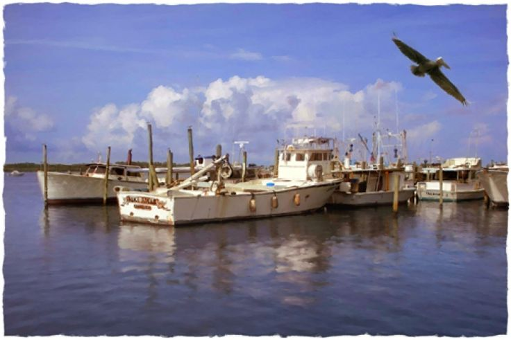 17 best images about fishing village on pinterest for Deep sea fishing anna maria island