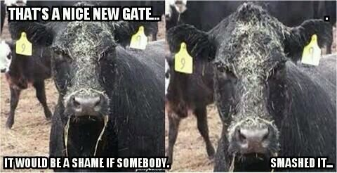 33 Best Farm Humor Images On Pinterest Funny Pics Funny