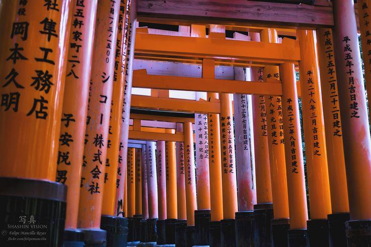 https://flic.kr/p/GDGhjM | Japon 2016 | Viaje a Japon 2016 Shashin vision - 写真 © Felipe Mancilla Reyes www.flickr.com/felipemancilla