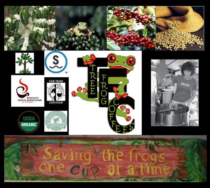 Organic, fairly traded, shade grown, Rainforest Alliance, Swiss Water Process decaf coffee from Tree Frog Coffees