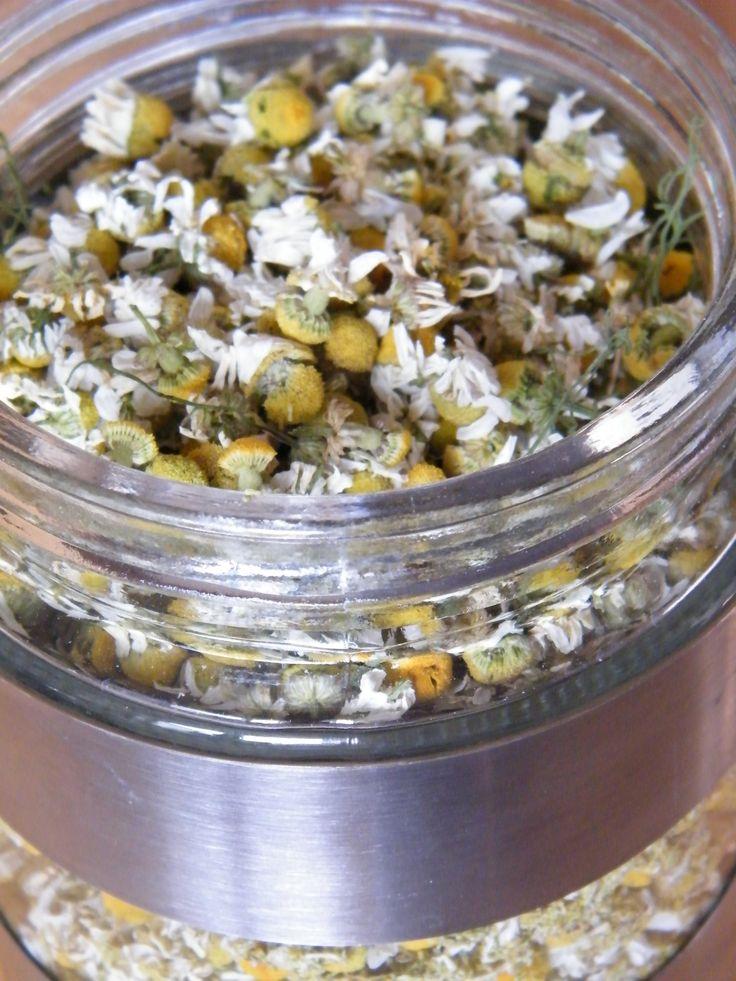 how to make magnolia flower tea