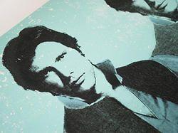 Solo Warhol